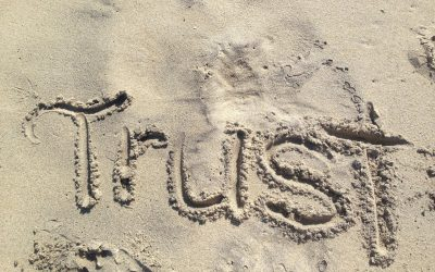 Learning To Trust Again After Divorce